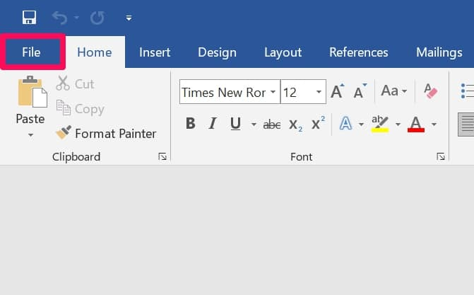 Click File on Microsoft Word
