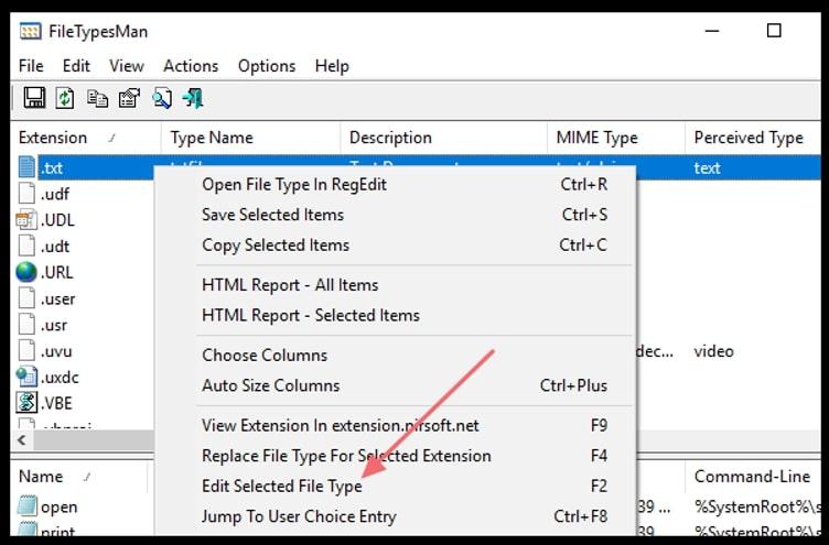 FileTypesMan interface highlighting the option to change file type icon on Windows 10