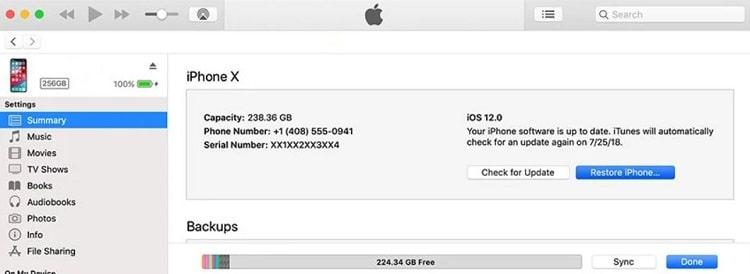 Reset iPhone using iTunes